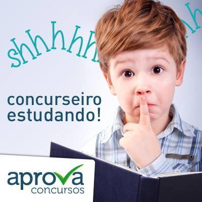 concurseiro_estudando