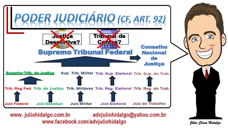7- Poder Judiciário