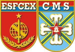 ESFCEX
