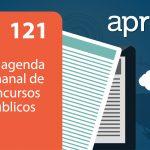 Aprova News 121 - PM MG, ALE GO, UFF, PRF, IBGE